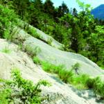 B3 – Grès d'Annot – Les Roubines, géologie et végétation